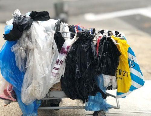 Usamos 10 millones de bolsas cada minuto y el 70% acaban en los océanos
